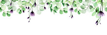 Watercolor Seamless Border, Frame, Banner With Eucalyptus Leaves And Transparent Wildflowers. Green Eucalyptus Leaves And Purple Roses Isolated On Bleached Background