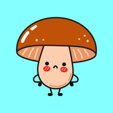 Cute Sad Mushroom Character. Vector Hand Drawn Cartoon Kawaii Character Illustration Icon. Isolated On White Background. Mushroom Character Concept