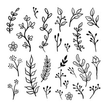 Floral Ornaments Doodle Set. Hand Drawn Tree Branches With Leaves And Flowers
