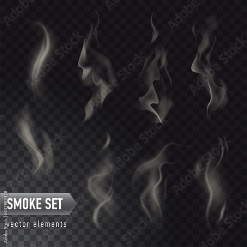 Fotografie, Obraz Set of high detailed smokes from hot food or drink isolated on transparent backg