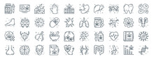 Linear Pack Of Cells Organs And Medical Cannabis Line Icons. Linear Vector Icons Set Such As Identity Card, Stomach, Lungs, Breast Cancer, Nose, Dna Structure. Vector Illustration.