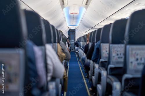 Slika na platnu Interior of a passenger plane, passage between the seats.