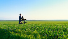 Businessman Carries An Office Chair In A Field To Work, Freelance And Business Concept, Green Grass And Blue Sky As Background