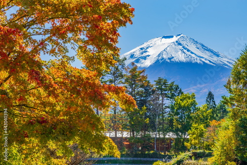 Foto 富士山と紅葉 山梨県富士吉田市富士北麓公園にて