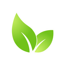 Eco Green Leaf Icon Bio Nature Green Eco Symbol For Web And Business