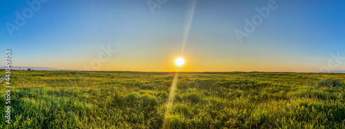 Foto 日と野原のパノラマ(はまなすの丘)1
