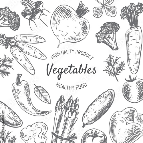 Tela Hand Drawn Vegetables Background