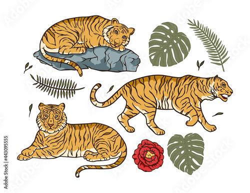 Foto Cartoon bengal tiger animal vector jungle tropical set
