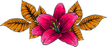 Vector Illustration Of Lily Flower With Leaves