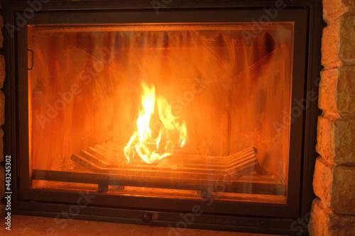 Slika na platnu La fiamma all'interno di un camino in una casa.