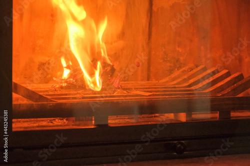 Stampa su Tela La fiamma all'interno di un camino in una casa.