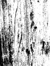 Vector Wood Wall Texture. Illustration For Backgrounds