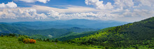 """View From A High Mountain """"bald"""" (treeless Clearing) In Roan Mountain State Park In Tennessee In Mid-June. Orange Shrub Is Flame Azalea (Rhododendron Calendulaceum)."""