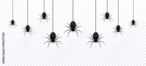 Canvas Vector realistic isolated seamless pattern with hanging spiders for decoration and cover on transparent background