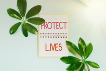 Conceptual Caption Protect Lives. Word For To Cover Or Shield From Exposure Injury Damage Or Destruction Creating Nature Theme Blog Content, Preventing Environmental Loss