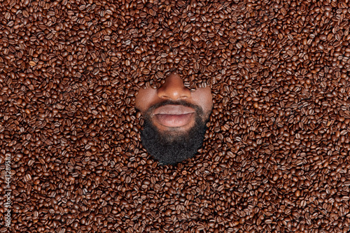 Fotografie, Obraz Horizontal shot of human head covered with roasted coffee beans hidden in brown seeds has thick beard and mustache enjoys pleasant smell