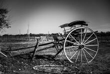 Antigua Carreta Abandonada En Campo De Buenos Aires Argentina