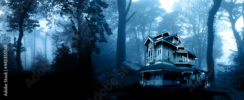 Fotografia Haunted house. Old abandoned house in the night forest