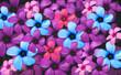 Leinwandbild Motiv power flower