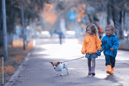 Fotografering children dog autumn / two children, a boy and a girl walking with a small dog in