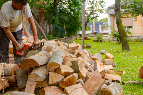 Fotografie, Obraz Logger is cutting firewood in the yard with chainsaw