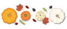 Hand-drawn Flat Lay, Food Knolling Style Vector Illustration Of  Ingredient, Isolated On White Background. Autumn Vegan Ingredient; Pumpkin, Wild Berries, Prune, Red Maple Leaves, Rosemary Twig.