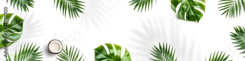 Photo Tropical leaves, Monstera plants and coconut isolated on white background