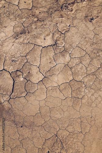 cracked earth texture Fototapet