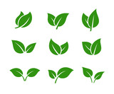 Green leaves set. Tree leaf. Spring, summer, autumn. Color eco icon logo. Ecology nature.