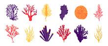 Algae. Cartoon Sea And Ocean Plants, Fantasy Seaweeds For Posters And Marine Products. Vector Algae Isolated Set