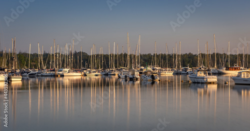 Carta da parati A marina of sailing boats at sunrise with numerous reflections of their masts al