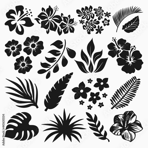 Fotografie, Obraz Hibiscus And Tropical Leaves Vector Collection