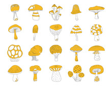 Black And Yellow Mushrooms Set On White Background. Hand Drawing Food Vector Illustration. Autumn Clipart.