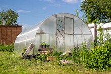 Homemade Glazed Wooden Greenhouse And Beds With Potatoes In The Vegetable Garden In Russia. Seasonal Gardening And Horticulture