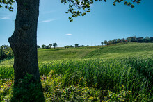 Countryside Landscape At The End Of Springtime. Hillside Of Bologna, Serravalle Castle, Emilia And Romagna, Italy.