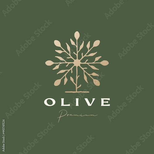 Fototapeta olive tree sophisticated aesthetic logo vector icon illustration