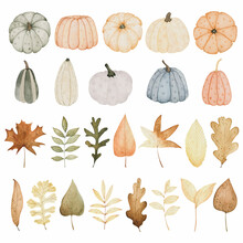Watercolor Autumn Set With Pumpkins And Leaves. Hand Drawn Fall Illustration For Thanksgiving Invitations, Greeting Cards And Other.
