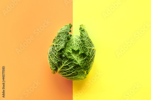Fresh savoy cabbage on color background Fotobehang