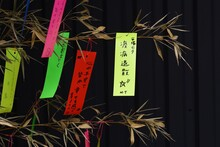 Japanese Tanabata Festival  Is Held On July 7th Every Year,  People Write Their Wishes On Colorful Strips Of Paper Called Tanzaku. After Writing Their Wishes, They Hang Tanzaku On The Bamboo Grass.