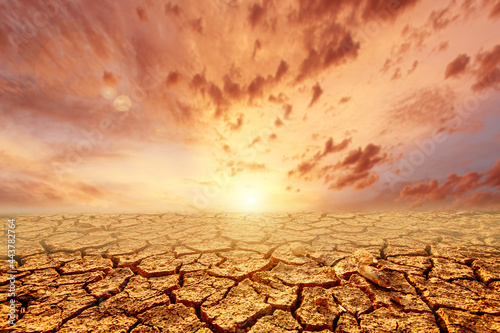 Foto The land is cracked, the rain does not fall in season There was a drought due to global warming