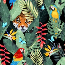 Seamless Pattern With Tropical Birds And Jaguar
