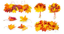 Set Of Autumn Themed Compositions - Isolated  Bouquets Of Natural Leaves, Single Maple Leaves, Abstract Pile Of Maple Leaves Of Yellow, Orange, Red, Burgundy, Green Colors On White Background.