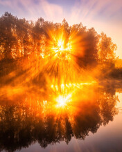 Misty Sunrise On The Pond In The Autumn Morning. Trees With Rays Of The Sun Cutting Through The Branches, Reflected In The Water.
