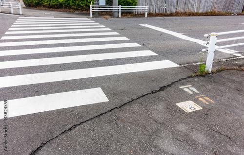 日本で撮影した横断歩道の写真。無人。 Fototapet