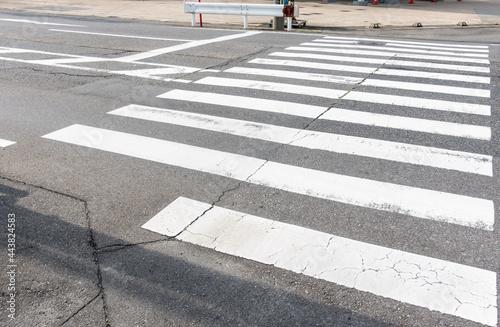 Fototapeta 日本で撮影した横断歩道の写真。無人。