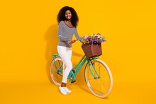 Full Length Body Size Photo Of Woman Keeping Bicycle With Flower Pot Smiling Isolated On Bright Yellow Color Background