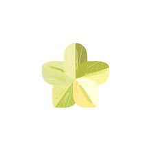 Green Graphic Flower Tracery, Vector Illustration