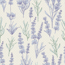 Seamless Pattern With Hand-drawn Sketch Of Cute Lavender Flower Bouquets. France Provence Retro Style For Romantic Design Concept, Rustic Digital Paper. Natural Lavander Vintage Vector
