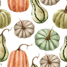 Seamless Pattern With Green And Orange Pumpkins On White Background, Illustration Watercolor Hand Painted.