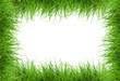 canvas print picture - green grass frame